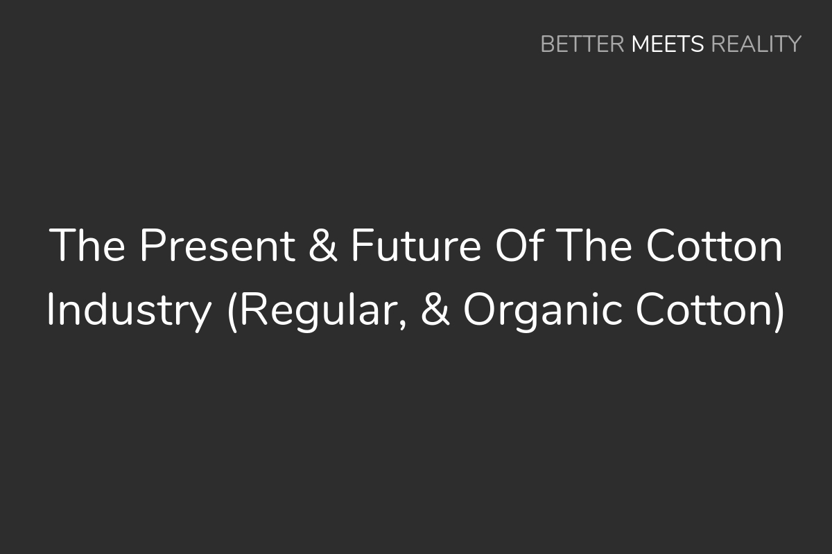 The Present & Future Of The Cotton Industry (Regular, & Organic)