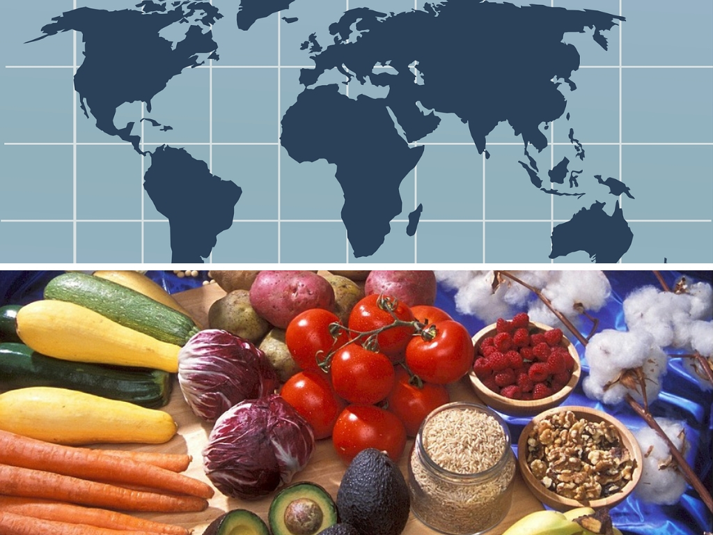 List Of GMO Foods & Crops In Different Countries