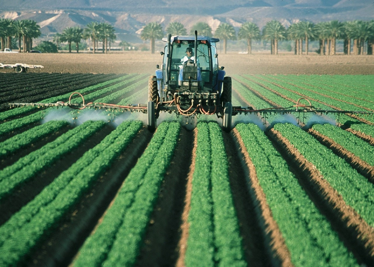 Potential Impact Of GMOs On The Environment