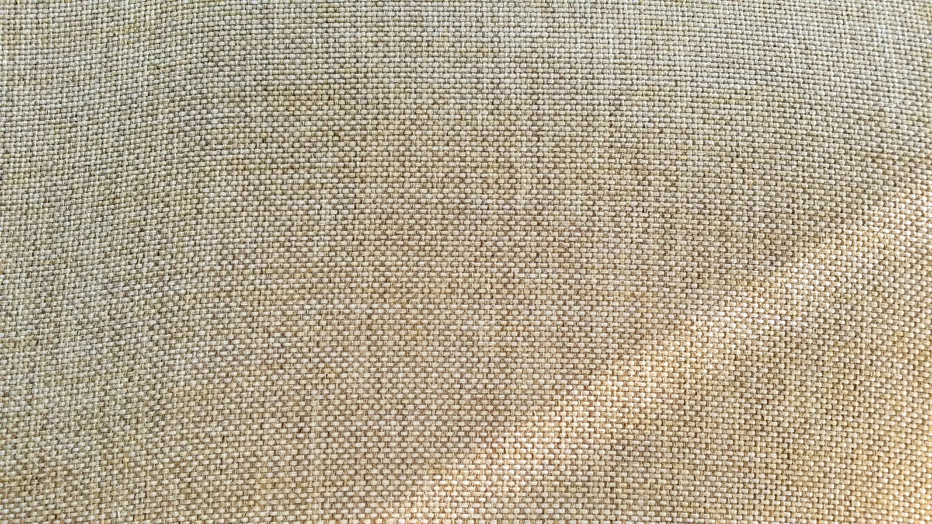 A Short Guide About Jute: Uses/Products, Growing & More
