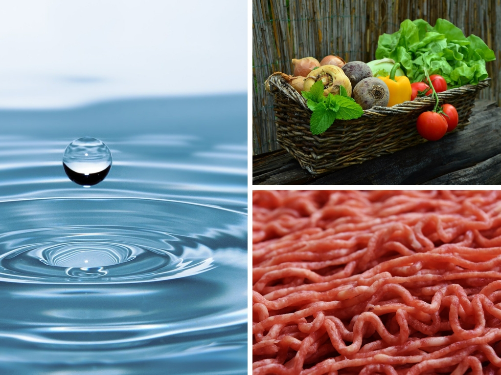 How To Decrease The Water Footprint In The Foods You Eat