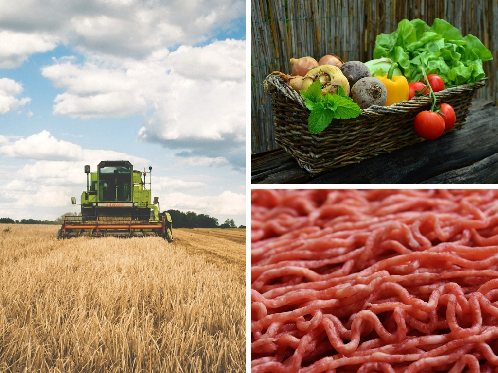 How To Decrease The Land Footprint In The Foods You Eat