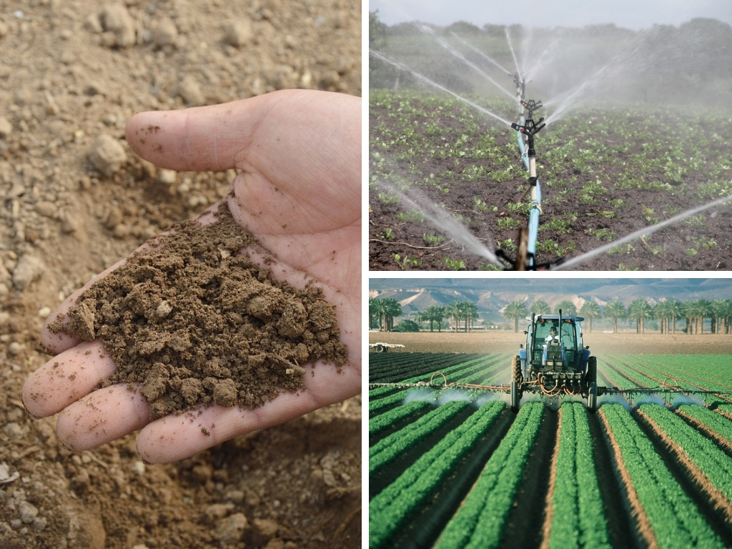 Foods That Waste The Most Resources During Production (Cropland, Irrigated Water, Pesticides, Fertilizer)