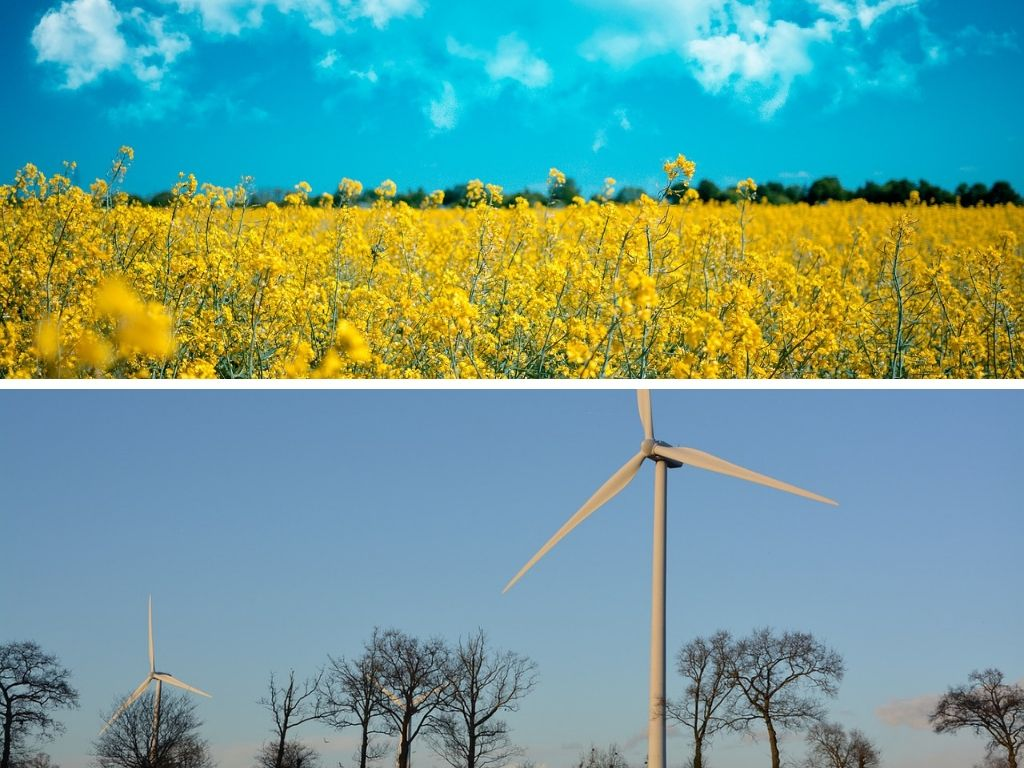 Renewable Energy vs Green Energy: The Difference Between Renewable Energy, & Clean/Green/Sustainable/Eco Friendly Energy