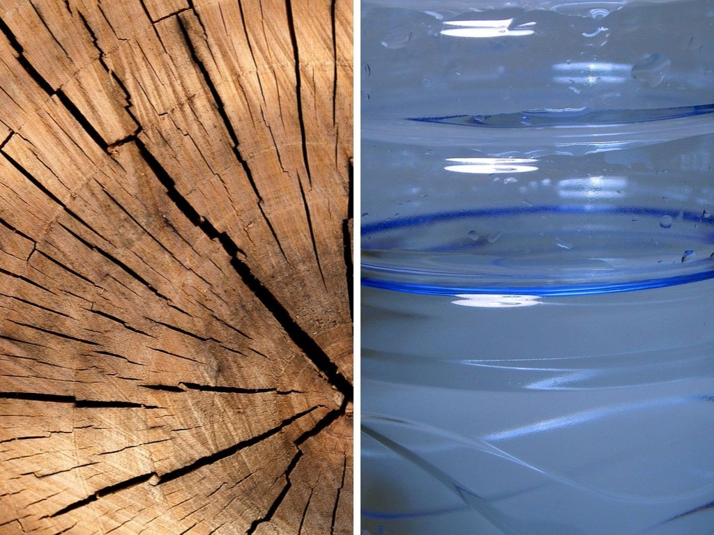 Is Wood More Sustainable Than Plastic? (Wood vs Plastic Comparison)